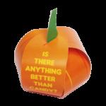 Pumpkin Treat Box Gospel Tracts
