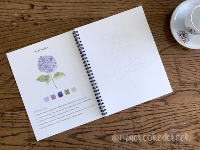 Simplified Watercolor Workbooks from Emily Lex