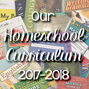 Our Homeschool Curriculum Choices (2017-18)